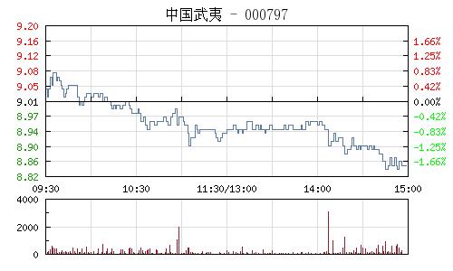 中國武夷(000797)行情走勢圖