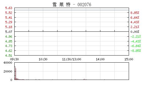 雪萊特(002076)行情走勢圖